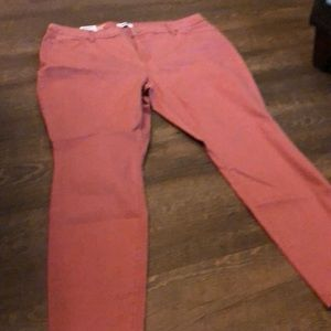 NWT Sonoma Skinny Mid Rise Jeans